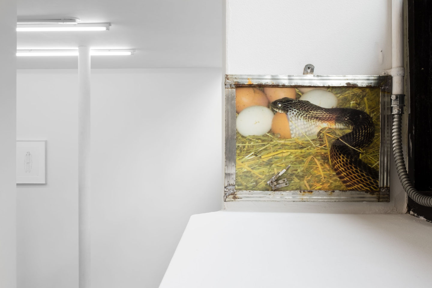 P!, room_east_o_u_DSF5048_low_res Kate Levant, Untitled, 2014
